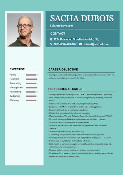 online resume maker -sample 8